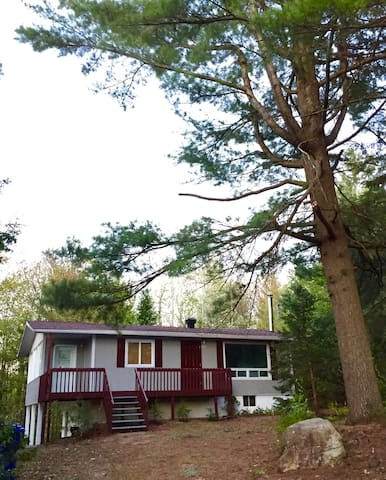 House for rent with Pines and Lake