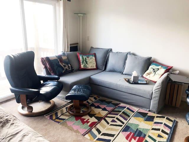 Sleeper Sofa & Lounge Chair