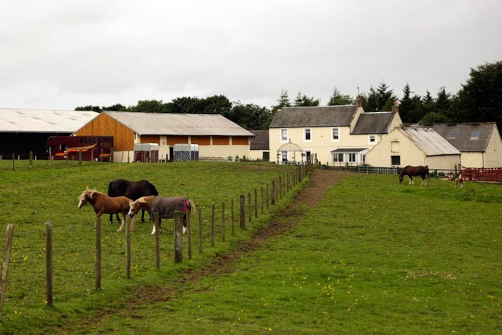 Private, peaceful location set in small holding where we breed Welsh Ponies & Cobs.