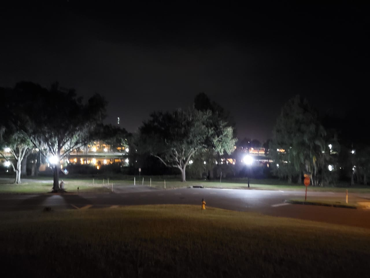 View from the porch at night.