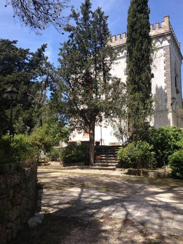 Lovely ancient country house - Gioia del Colle - 一軒家