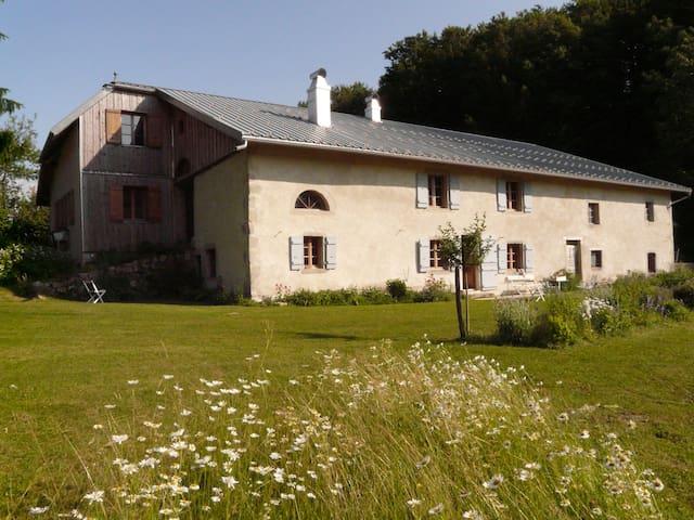 """""""la Sange - les chevreuils"""" - Foncine-le-Bas - House"""