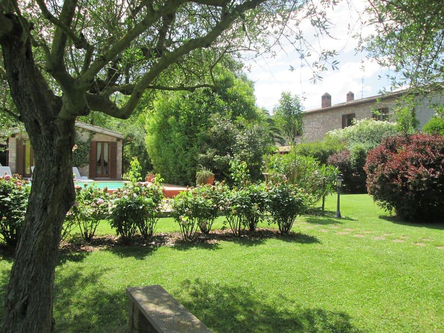 Giardino tra le due case  The garden between two houses