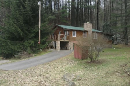 Cozy Cabin for Rafting or Skiing! - Scarbro