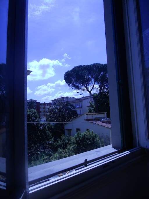 Dalla finestra della camera Bianca