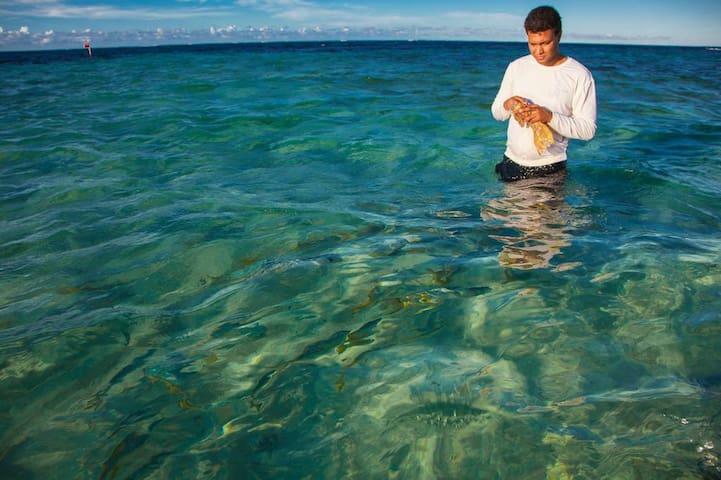 Feeding fish in Cayo Paraiso