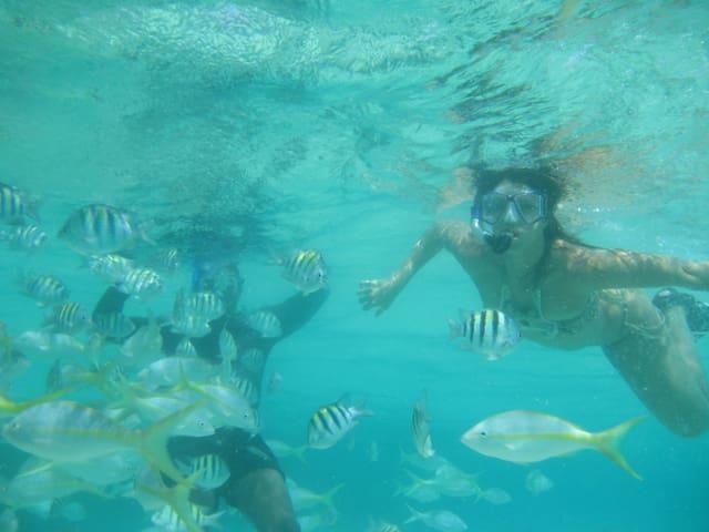 Feeding fish in Cayo Paraiso!
