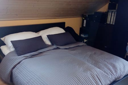 Room in a villa near town center - Ostrava