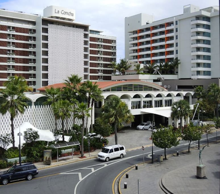 Apartments For Rent In San Diego That Allow Large Dogs: Best Possible Location In Condado!!