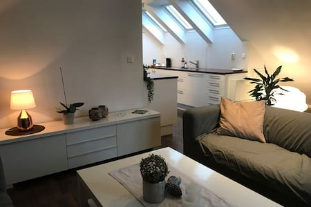Fully equipped loft with private entrance. Central