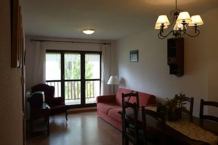 Apartamento Cerler - Cerler