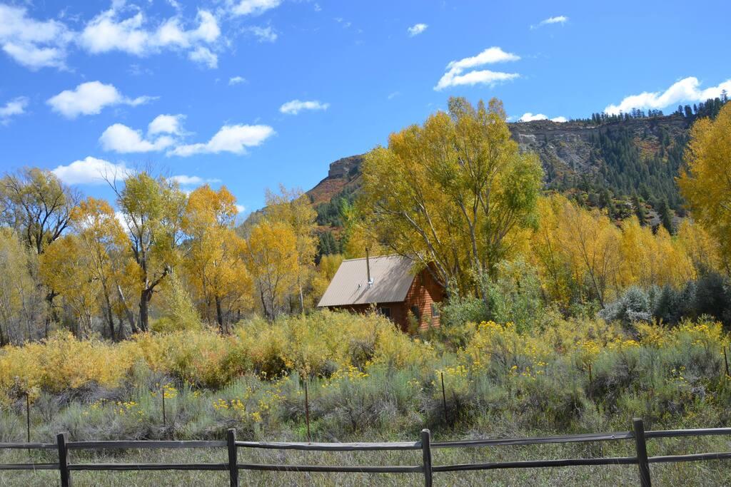Cabin in autumn brilliance