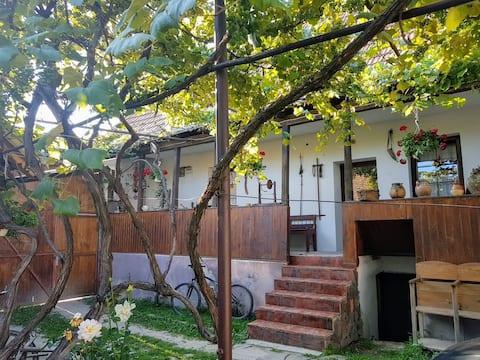 Traditional Transylvanian house