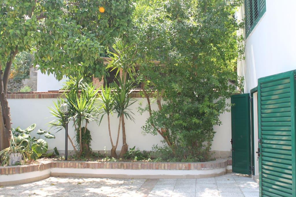 ampio giardino attrezzato
