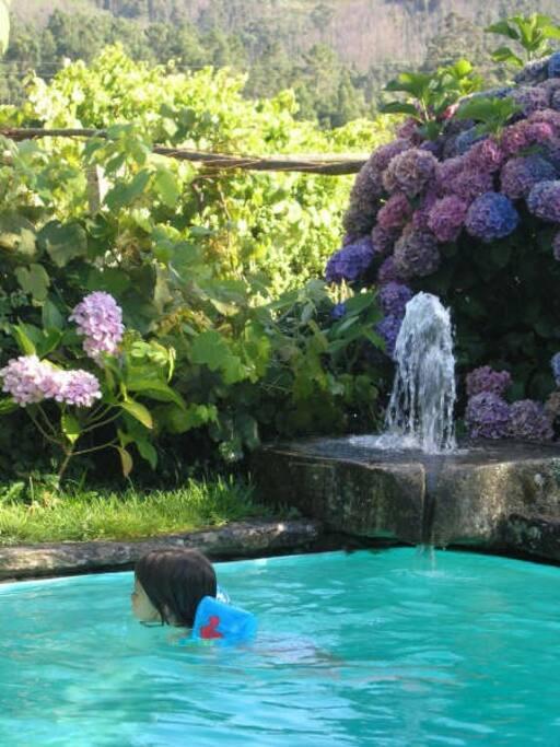antigo Lagar/fonte da piscina