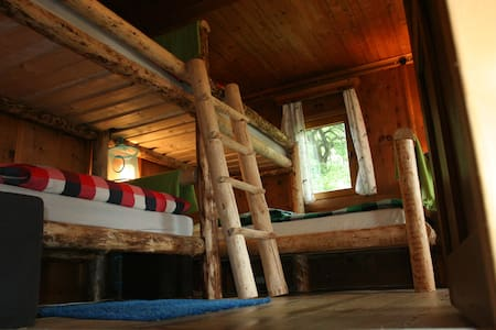 Bluebird Zillertal 1 bed in DormR..