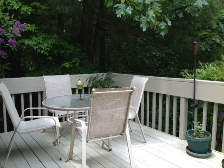 Back Deck with Deck