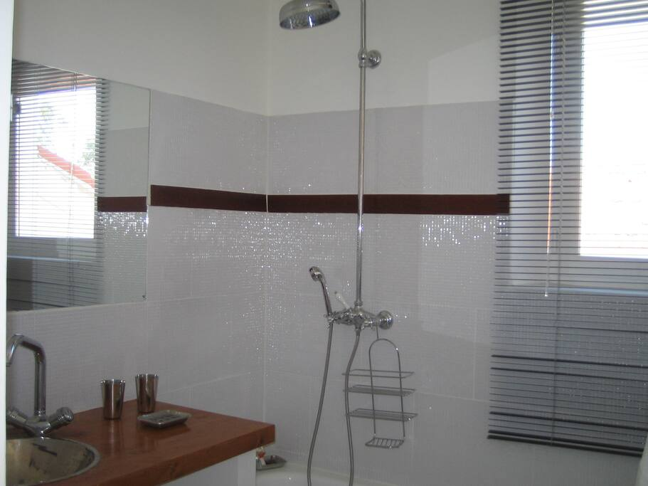 salle de bain baignoire big douche seche cheveux