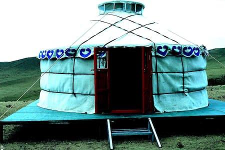 特木尔巴根野营地
