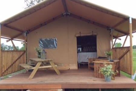 Camping De Stjelp - Oudega Gem Smallingerlnd - Zelt