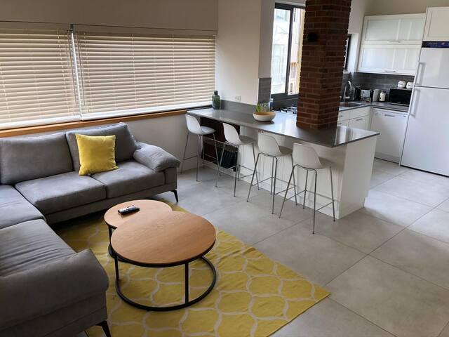 Entire modern apartment steps from Hilton Beach