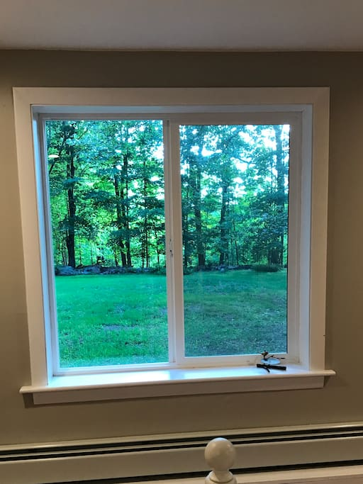 bedroom window with view to open yard and tree line in the distance