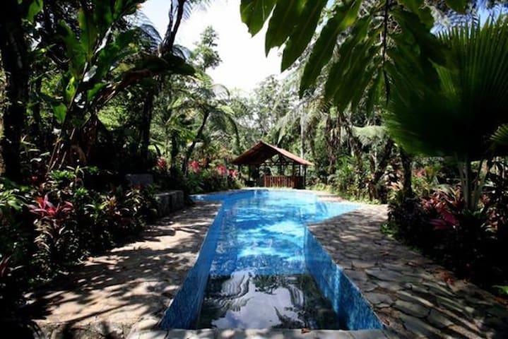Magical Tropical Fantasy