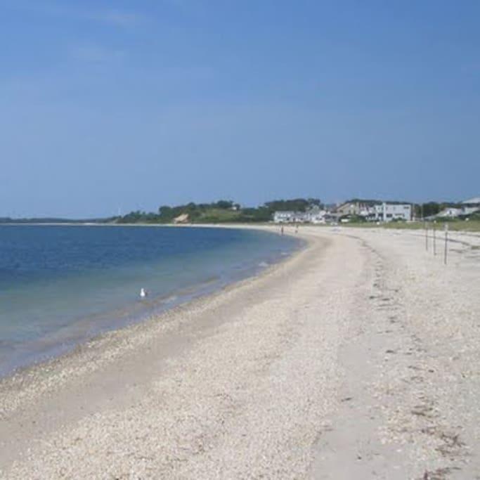 Peconic Bay Beach