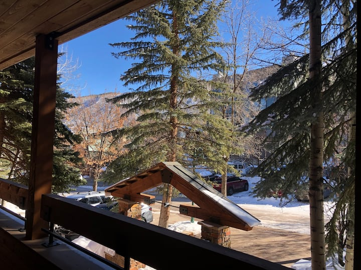 Private luxurious suite. Ski-in off Aspen Mtn