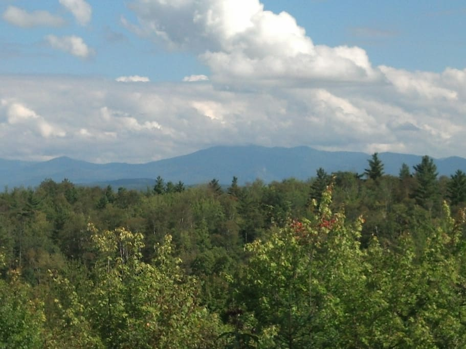 View of the White Mountains from the property.