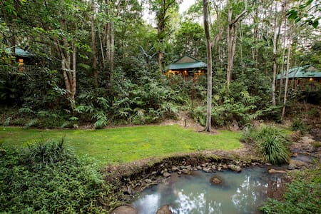 Narrows Escape Rainforest Retreat - North Maleny - Hus i træerne