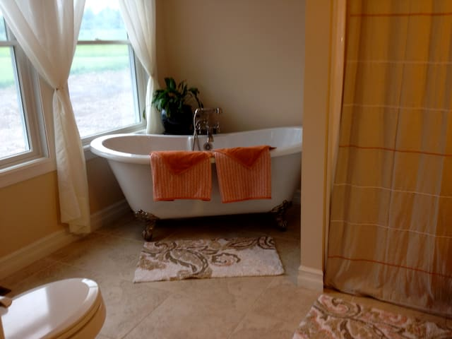 Soaker tub and shower in private master bath has a good lean for 2 people and pretty view of pond in back yard