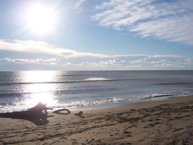 spiaggia di castiglione della pescaia