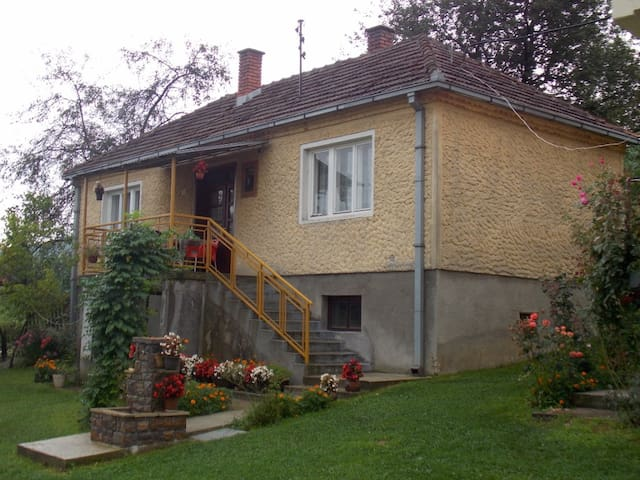 Traditional house in Guca