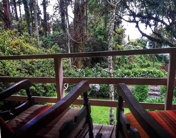 Cozy Cottage - Amazing place, near capivari