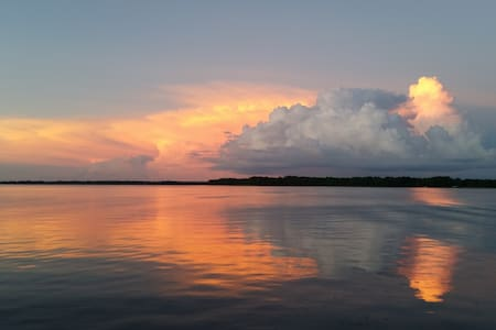 Lake Tarpon - Fantastic View! - Palm Harbor