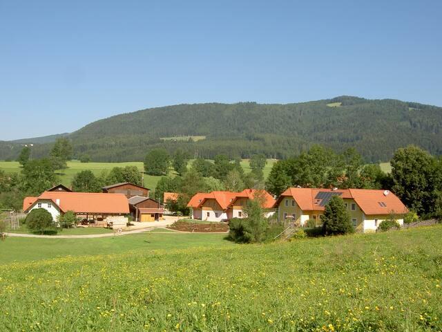 Ferienhaus am Bauernhof - Fladnitz an der Teichalm - Haus