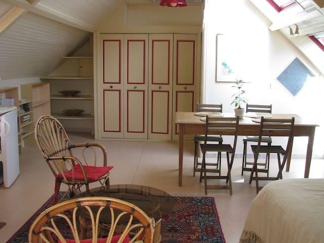Studio indépendant à  7 mn du centre de Tours - Fondettes - Apartment