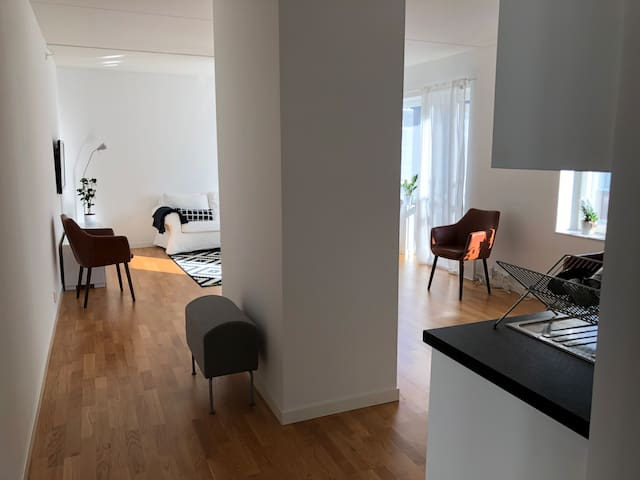 Modern spacious apartment in central Stockholm