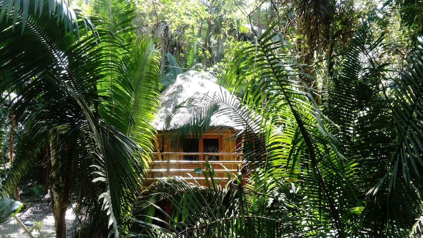 Aldea Bamboo Village II Ecolodge in Jungle/Beach