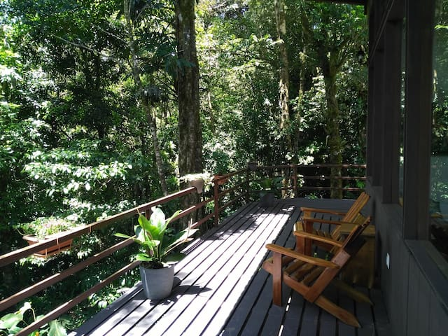 Privacy in the Heart of Monteverde