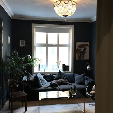 Central and spacious with balcony - Oslo - Appartement