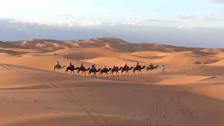 trips and tours around morocco