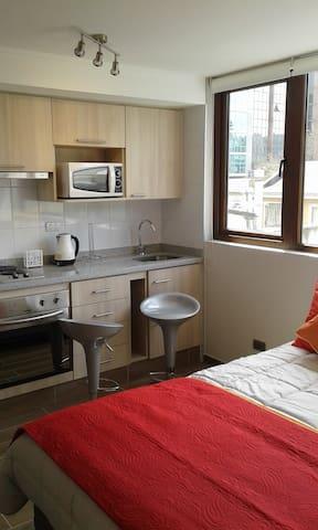 Apartamento un ambiente Concepción Centro.