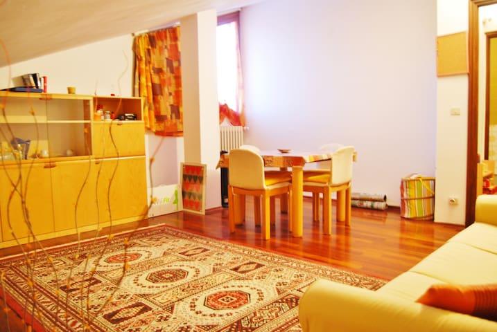 Appartamento mansardato comodo ed accogliente - Cuneo - Byt