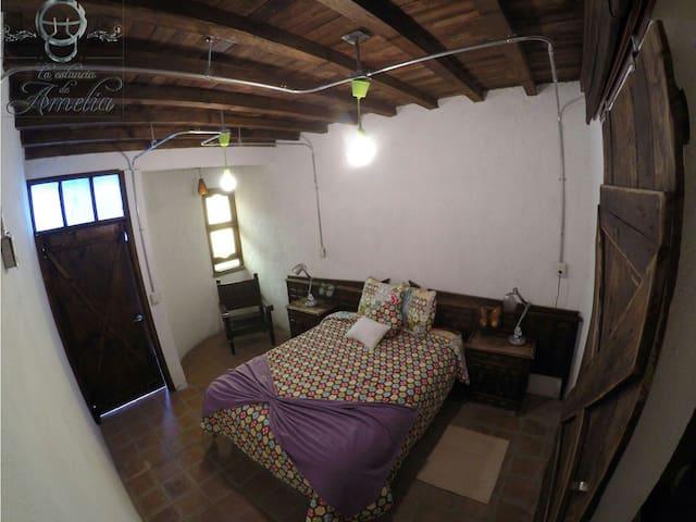 Habitación para dos personas - San Lorenzo Tlalmimilolpan, Estado de México, MX - Дом