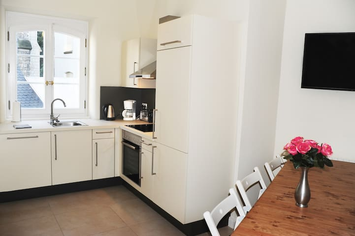4 room Apartment Mainz downtown