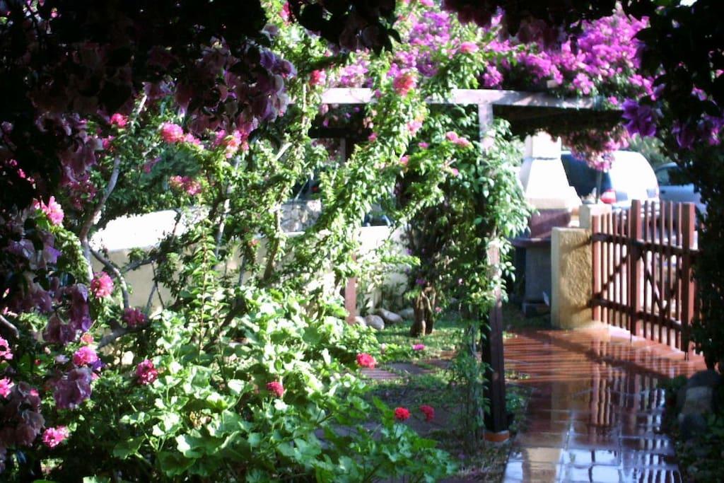 Vista giardino dalla veranda