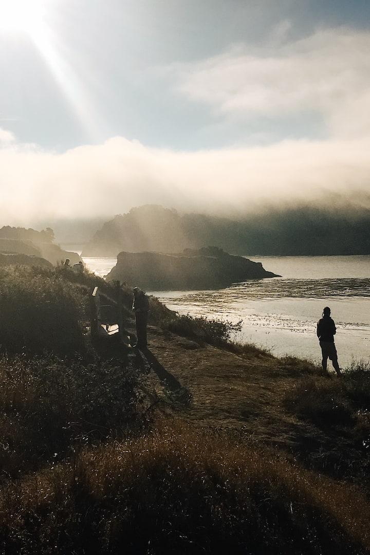 Mendocino headlands morning fog