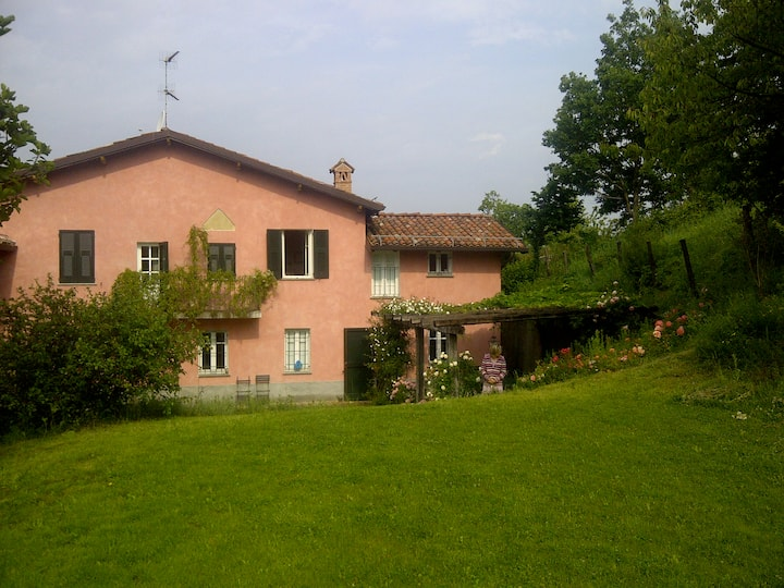 Ancient Villa with pool in wineyard
